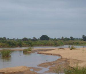 River Pungue